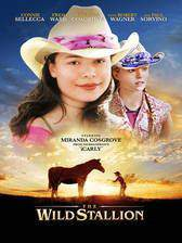 the_wild_stallion movie cover