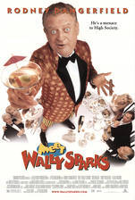 meet_wally_sparks movie cover