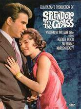 splendor_in_the_grass movie cover
