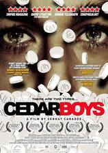 cedar_boys movie cover