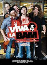 viva_la_bam movie cover