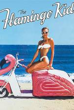the_flamingo_kid movie cover