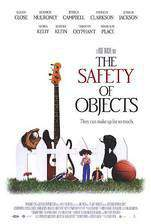 the_safety_of_objects movie cover