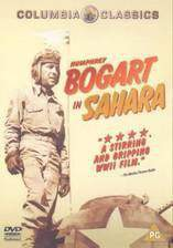sahara_1943 movie cover