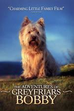 greyfriars_bobby movie cover