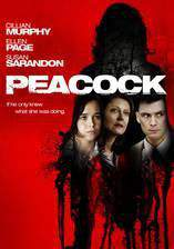 peacock movie cover