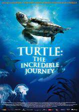 turtle_the_incredible_journey movie cover