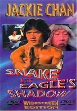 snake_in_the_eagle_s_shadow movie cover