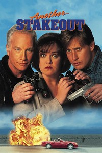 Another Stakeout main cover