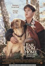 far_from_home_the_adventures_of_yellow_dog movie cover