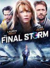 final_storm movie cover