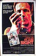 hide_in_plain_sight movie cover
