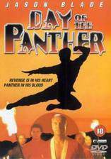day_of_the_panther movie cover