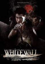 white_wall movie cover