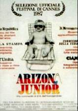 raising_arizona movie cover