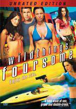 wild_things_foursome movie cover