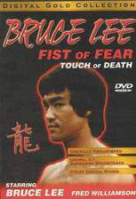 fist_of_fear_touch_of_death movie cover