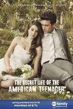 the_secret_life_of_the_american_teenager movie cover