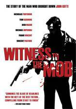 witness_to_the_mob movie cover