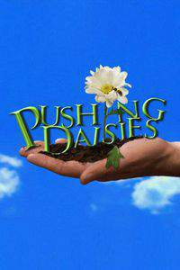 Pushing Daisies movie cover