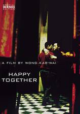happy_together_1999 movie cover