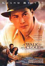 a_walk_in_the_clouds movie cover