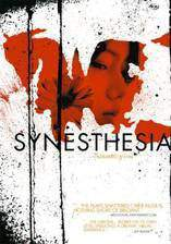 synesthesia movie cover