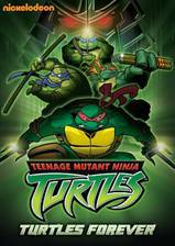 turtles_forever movie cover