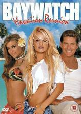 baywatch_hawaiian_wedding movie cover