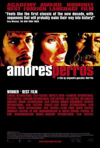 Amores Perros main cover