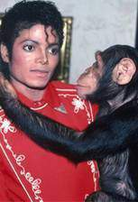 michael_jackson_and_bubbles_the_untold_story movie cover