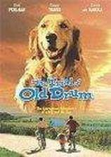 the_trial_of_old_drum movie cover