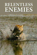 relentless_enemies movie cover