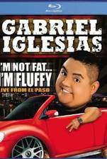 gabriel_iglesias_i_m_not_fat_i_m_fluffy movie cover