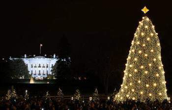 the_national_christmas_tree_lighting movie cover