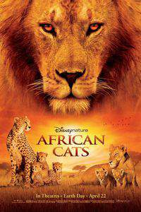 African Cats main cover