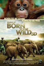 born_to_be_wild_70 movie cover