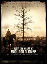 bury_my_heart_at_wounded_knee_2007 movie cover