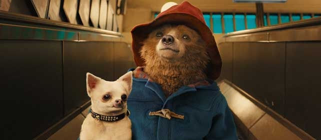 paddington movie cover