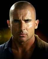 Actor Dominic Purcell