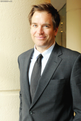 Actor Michael Weatherly