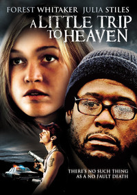 a_little_trip_to_heaven movie cover