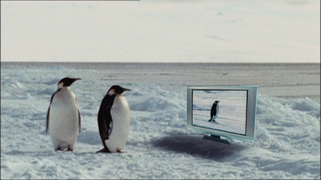 Download farce of the penguins movie for ipod iphone ipad for Farcical movies