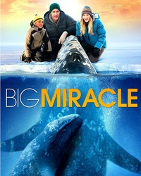 big_miracle movie cover