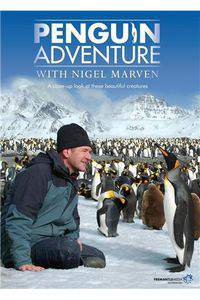 Penguin Adventure With Nigel Marven