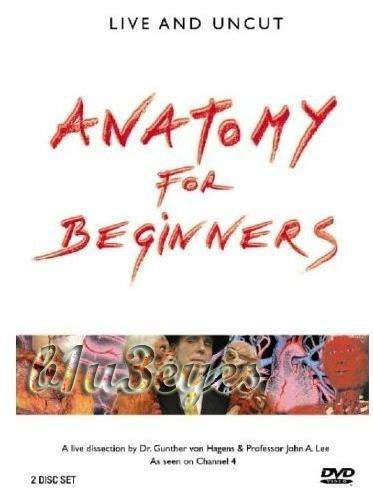 Anatomy for beginners