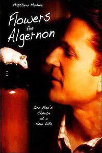 What are the effects that the operation had on Charlie Gordon in Flowers for Algernon?
