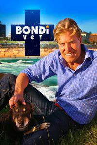 bondi_vet movie cover