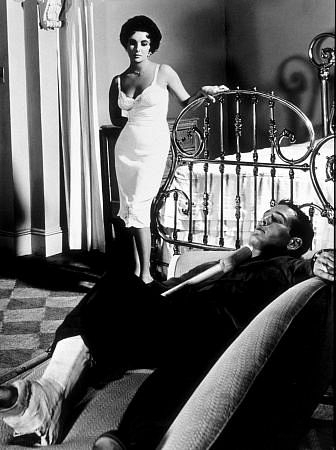 cat on a hot tin roof pdf online