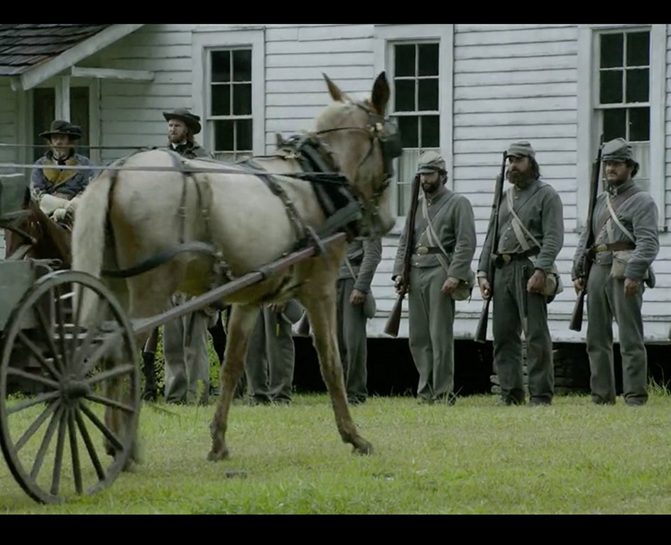 Free State of Jones | Official Trailer | Own It Now on ...